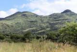 4262 Two weeks in South Africa - IMG_5860_DxO Pbase.jpg