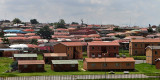 4447 Two weeks in South Africa - IMG_5998_DxO Pbase.jpg