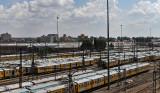 4470 Two weeks in South Africa - IMG_6022_DxO Pbase.jpg