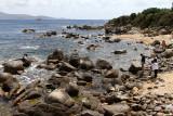 36 Une semaine en Corse du sud - A week in south Corsica -  IMG_7913_DxO Pbase.jpg