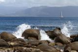 47 Une semaine en Corse du sud - A week in south Corsica -  IMG_7924_DxO Pbase.jpg