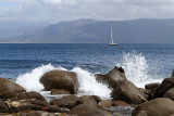 48 Une semaine en Corse du sud - A week in south Corsica -  IMG_7925_DxO Pbase.jpg