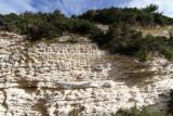 71 Une semaine en Corse du sud - A week in south Corsica -  IMG_7948_DxO Pbase.jpg