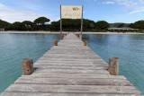 81 Une semaine en Corse du sud - A week in south Corsica -  IMG_7958_DxO Pbase.jpg