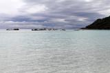 92 Une semaine en Corse du sud - A week in south Corsica -  IMG_7969_DxO Pbase.jpg