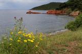 147 Une semaine en Corse du sud - A week in south Corsica -  IMG_8024_DxO Pbase.jpg