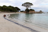 163 Une semaine en Corse du sud - A week in south Corsica -  IMG_8040_DxO Pbase.jpg