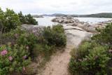 178 Une semaine en Corse du sud - A week in south Corsica -  IMG_8055_DxO Pbase.jpg