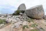 180 Une semaine en Corse du sud - A week in south Corsica -  IMG_8057_DxO Pbase.jpg