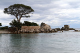 223 Une semaine en Corse du sud - A week in south Corsica -  IMG_8100_DxO Pbase.jpg