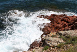 254 Une semaine en Corse du sud - A week in south Corsica -  IMG_8131_DxO Pbase.jpg