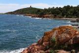 256 Une semaine en Corse du sud - A week in south Corsica -  IMG_8133_DxO Pbase.jpg