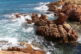 276 Une semaine en Corse du sud - A week in south Corsica -  IMG_8153_DxO Pbase.jpg