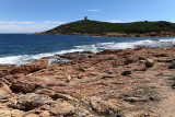 280 Une semaine en Corse du sud - A week in south Corsica -  IMG_8157_DxO Pbase.jpg