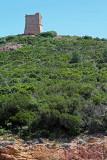 291 Une semaine en Corse du sud - A week in south Corsica -  IMG_8168_DxO Pbase.jpg