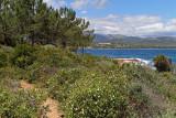 300 Une semaine en Corse du sud - A week in south Corsica -  IMG_8177_DxO Pbase.jpg