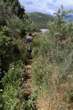 302 Une semaine en Corse du sud - A week in south Corsica -  IMG_8179_DxO Pbase.jpg