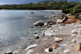 343 Une semaine en Corse du sud - A week in south Corsica -  IMG_8220_DxO Pbase.jpg