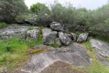 361 Une semaine en Corse du sud - A week in south Corsica -  IMG_8238_DxO Pbase.jpg