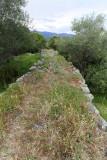 372 Une semaine en Corse du sud - A week in south Corsica -  IMG_8249_DxO Pbase.jpg