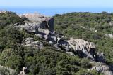 383 Une semaine en Corse du sud - A week in south Corsica -  IMG_8260_DxO Pbase.jpg