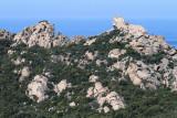 384 Une semaine en Corse du sud - A week in south Corsica -  IMG_8261_DxO Pbase.jpg