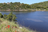 398 Une semaine en Corse du sud - A week in south Corsica -  IMG_8275_DxO Pbase.jpg