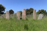 409 Une semaine en Corse du sud - A week in south Corsica -  IMG_8286_DxO Pbase.jpg