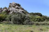 423 Une semaine en Corse du sud - A week in south Corsica -  IMG_8300_DxO Pbase.jpg