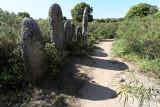 455 Une semaine en Corse du sud - A week in south Corsica -  IMG_8332_DxO Pbase.jpg