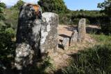 460 Une semaine en Corse du sud - A week in south Corsica -  IMG_8337_DxO Pbase.jpg