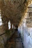 567 Une semaine en Corse du sud - A week in south Corsica -  IMG_8444_DxO Pbase.jpg