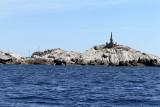 678 Une semaine en Corse du sud - A week in south Corsica -  IMG_8555_DxO Pbase.jpg