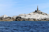 680 Une semaine en Corse du sud - A week in south Corsica -  IMG_8557_DxO Pbase.jpg