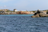 685 Une semaine en Corse du sud - A week in south Corsica -  IMG_8562_DxO Pbase.jpg