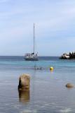 699 Une semaine en Corse du sud - A week in south Corsica -  IMG_8576_DxO Pbase.jpg