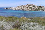 701 Une semaine en Corse du sud - A week in south Corsica -  IMG_8578_DxO Pbase.jpg