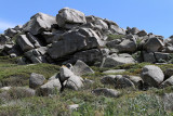 708 Une semaine en Corse du sud - A week in south Corsica -  IMG_8585_DxO Pbase.jpg