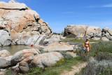 721 Une semaine en Corse du sud - A week in south Corsica -  IMG_8598_DxO Pbase.jpg