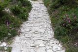882 Une semaine en Corse du sud - A week in south Corsica -  IMG_8761_DxO Pbase.jpg