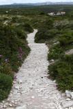 884 Une semaine en Corse du sud - A week in south Corsica -  IMG_8763_DxO Pbase.jpg