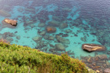 913 Une semaine en Corse du sud - A week in south Corsica -  IMG_8792_DxO Pbase.jpg