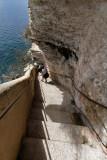 1020 Une semaine en Corse du sud - A week in south Corsica -  IMG_8905_DxO Pbase.jpg