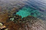 1038 Une semaine en Corse du sud - A week in south Corsica -  IMG_8924_DxO Pbase.jpg