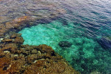 1039 Une semaine en Corse du sud - A week in south Corsica -  IMG_8925_DxO Pbase.jpg