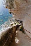 1075 Une semaine en Corse du sud - A week in south Corsica -  IMG_8962_DxO Pbase.jpg