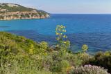 1158 Une semaine en Corse du sud - A week in south Corsica -  IMG_9055_DxO Pbase.jpg