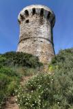 1168 Une semaine en Corse du sud - A week in south Corsica -  IMG_9066_DxO Pbase.jpg