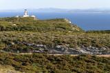 1150 Une semaine en Corse du sud - A week in south Corsica -  IMG_9046_DxO Pbase.jpg