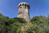 1169 Une semaine en Corse du sud - A week in south Corsica -  IMG_9067_DxO Pbase.jpg